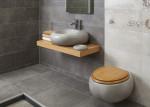 Baño en tonos grises y sanitarios gris granito