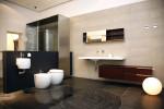 Baño moderno con ducha de acero inoxidable