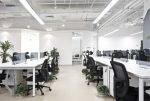 Oficina minimalista con plantas